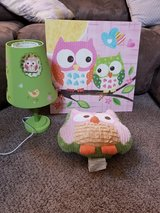 owl lamp, picture & throw pillow in Vacaville, California