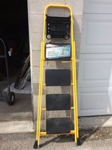 Ladder in Plainfield, Illinois