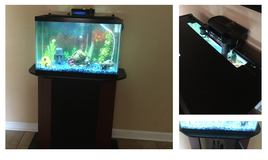 20 gal. fish tank, stand, LED Hood, all you need. ($50 w/o stand) Lots of extras! in Fort Rucker, Alabama