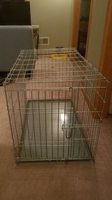 Dog Crate Metal Foldable in Naperville, Illinois
