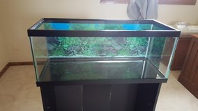 Top Fin 20-Gallon Fish Tank/Aquarium in Tinley Park, Illinois