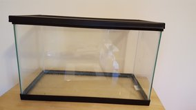 10 gallon tank and screen top in St. Charles, Illinois
