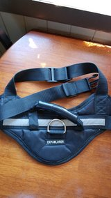 medium dog harness in Great Lakes, Illinois