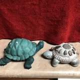 3 garden turtles in Travis AFB, California