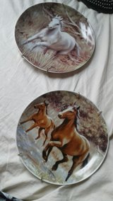 Ceramic horse plates in Fort Polk, Louisiana