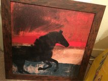 Horse Picture in Cleveland, Texas