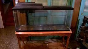 55 gallon aquarium with filter, heater and stand in Joliet, Illinois