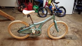 "20"" Girls Bike in Glendale Heights, Illinois"