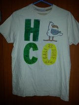 Hollister seagull t- shirt in Ramstein, Germany