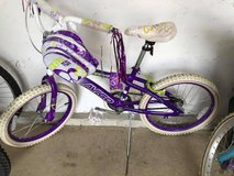 Girls Bicycle in Chicago, Illinois