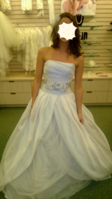 NEW Wedding Dress (accessories) in Baytown, Texas