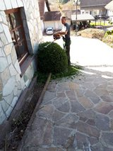 Yard Work/Lawn Care/Maintenance Service in Ramstein, Germany