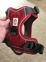 My Busy Dog Harness (S) in Orland Park, Illinois
