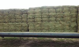 Alfalfa horse quality hay in Leesville, Louisiana
