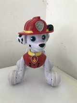 Paw patrol items in San Antonio, Texas