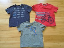 Toddler Boy's Hanna Andersson T-Shirt Lot - Size 90 in Yorkville, Illinois