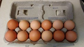 Dozen Organic Brown Eggs in Shaw AFB, South Carolina