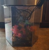 Fish tank - Aquarium with all Supplies in Fort Campbell, Kentucky