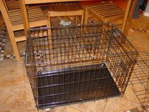 "36"" long black dog crate in Colorado Springs, Colorado"