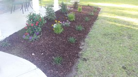 Lawns, Landscaping, and Pressure washing in Camp Lejeune, North Carolina