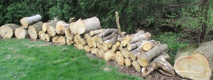 Firewood in Westmont, Illinois