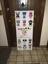 ty mini BOOS display piece in Plainfield, Illinois