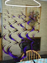 6 lg.& 12 sm. curly streamers graduation party in Naperville, Illinois