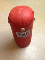 Everlast  Youth Punching Bag. in Orland Park, Illinois