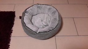 """More""Cat Bed in Ramstein, Germany"
