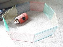 Guinea pig playpen with play tunnel in Sandwich, Illinois