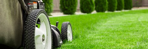 Lawn Care Service &Free Estimate in Ramstein, Germany
