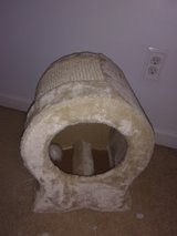 Cat scratcher in Warner Robins, Georgia