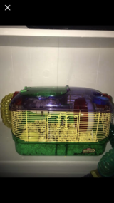 hamsters,cage and accesories in Fort Leonard Wood, Missouri