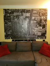 Ikea Large Primiar (discontinued New York canvas) in Oceanside, California