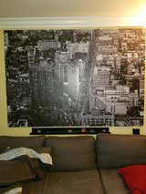 Ikea Primiar Large Canvas in Oceanside, California