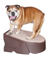 Pet Gear Stramp Stair and Ramp Combination, Dog/Cat Easy Step, Lightweight/Portable, Sturdy in Glendale Heights, Illinois