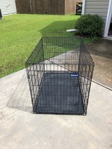 Wire Dog Crate in Cherry Point, North Carolina