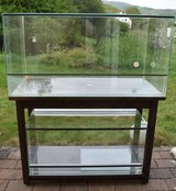 Double Terrarium with handmade solid wood stand in Baumholder, GE