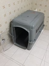 medium-large dog crate for travel in Ramstein, Germany