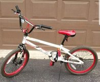 "Tony Hawk  Park Series 20"" boys bicycle bike in Morris, Illinois"