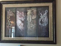 Animal Print in Fort Sam Houston, Texas