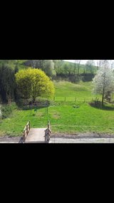 no fee  : duplex With great view in Obernheim in Ramstein, Germany