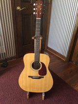 Alvarez RD10 Acoustic Guitar in Sandwich, Illinois