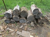 FREE FIRE WOOD. in Lockport, Illinois