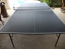 Ping Pong Table in Spring, Texas