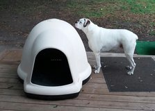Dog igloo house in Beaufort, South Carolina