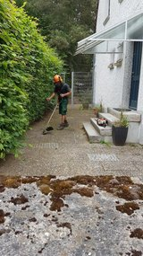 Yard Work/Lawn Care/Pressure Washing&Maintenance Service in Ramstein, Germany