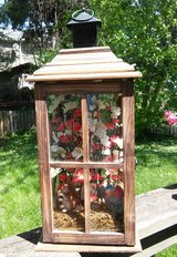 flowers incased in wood and glass in Bolingbrook, Illinois