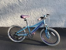 "Girls 20"" Performance Bike brand mountain bike in Westmont, Illinois"