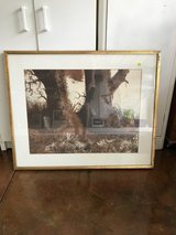 """Two Brown Trees Picture 32"""" x 26"""" in Elizabethtown, Kentucky"""